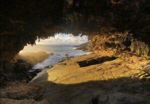 غار جزیره کانگارو، استرالیا